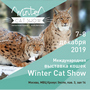 {БАННЕР=Winter Cat Show}